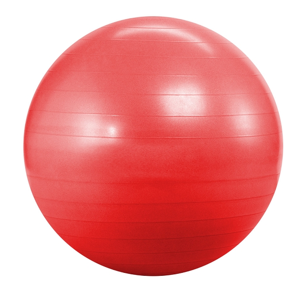 Мяч для аэробики Фитболл Landfit Fitness Ball 55cm with Pump