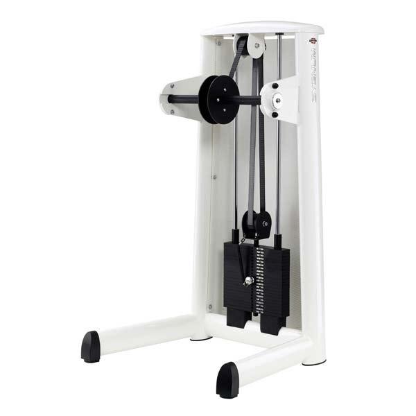 Тренажер - Машина для предплечий GYM80 SYGNUM Lower Arm Machine
