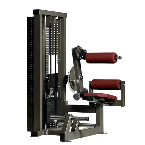 Тренажер - Машина для спины Gym80 CORE Lower Back Machine