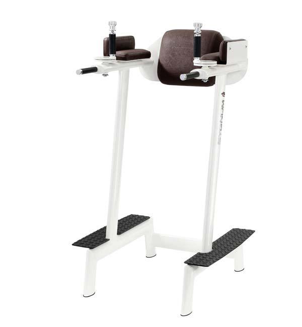 Тренажер - Пресс/брусья с регулируемыми рукоятками GYM80 SYGNUM Abdominal Flexor with adjustable arm