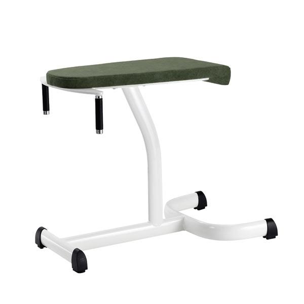 Тренажер - Скамья для ягодичных мышц GYM80 Medical Glutaeus Bench without Lower Leg Sup