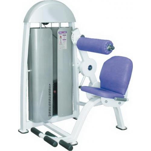 Тренажер для мышц спины ProFitGym В.911